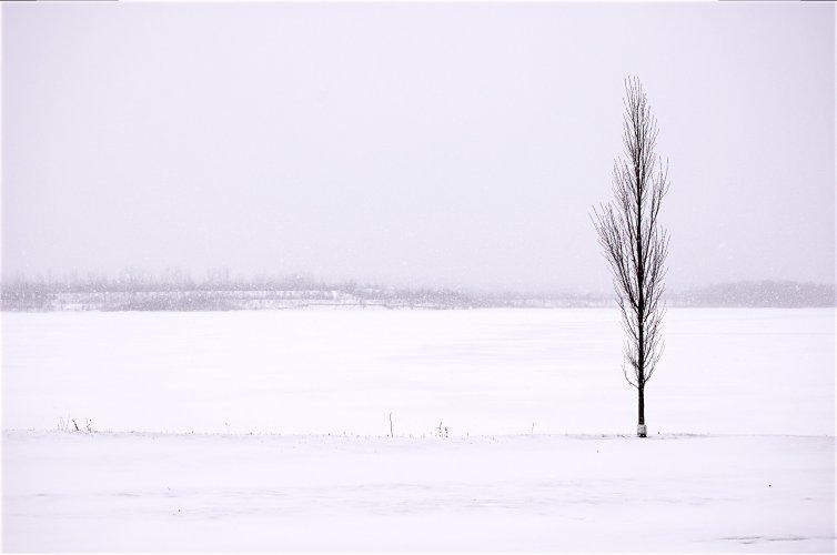 solitude_in_winter