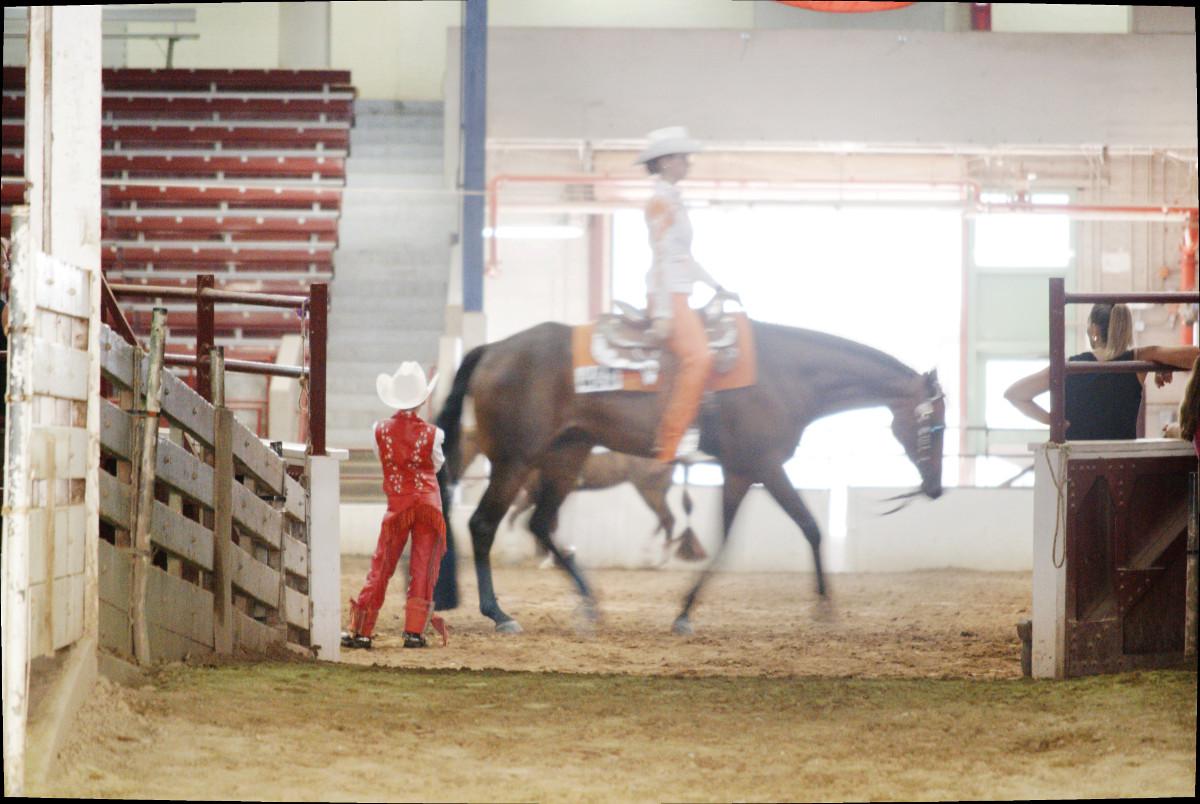 upstate_cowgirl_4.jpg