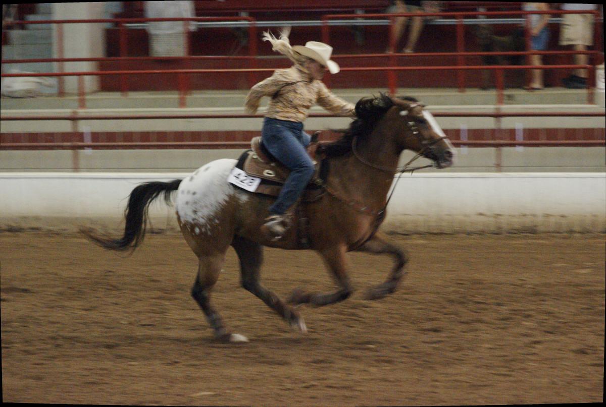 upstate_cowgirl_7.jpg